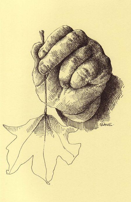 Nora's hand Pigma Micron 01