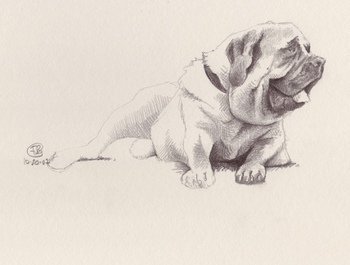 Mastiff_unfinished_2b_4